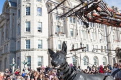 Xolo the Giant Dog, Liverpool's Dream 2018