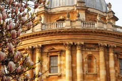 Radcliffe Camera, Spring