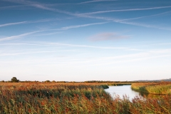 Otmoor Nature Reserve, Oxfordshire