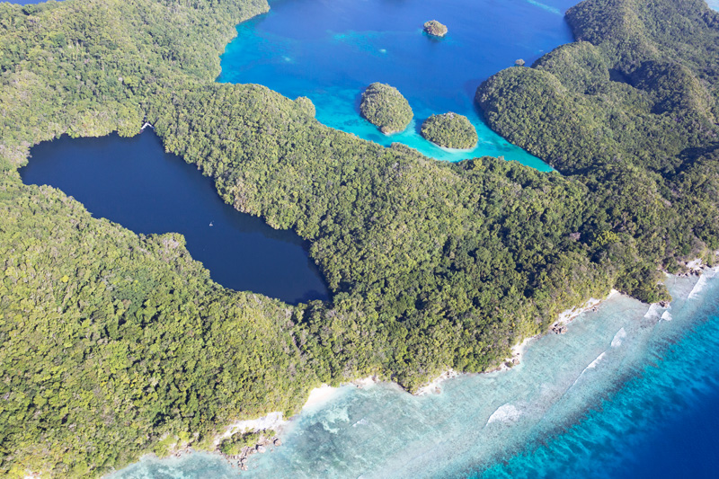 Jellyfish Lake, Palau from above
